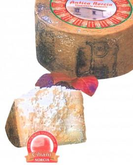 Pecorino ANTICA NORCIA stagionato piccante - ovino 3,9-4,1 Kg - vendita al pezzo - stagionatura 300 giorni - Ciliani